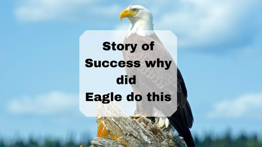 Story of Success why did Eagle do this
